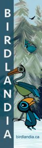 birdlandia banner